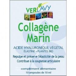 COLLAGÈNE MARIN ACIDE HYAL AMP10X10ML / PDM JUIL