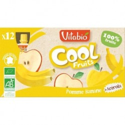 PACK FAMILIAL COOL FRUIT POMME BANANES 12X90GRS